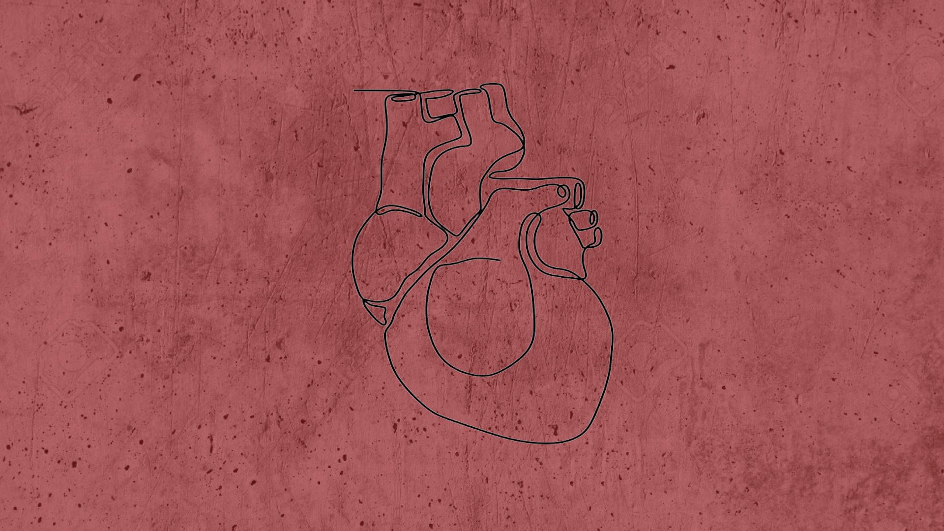 Artículos | Un corazón renovado